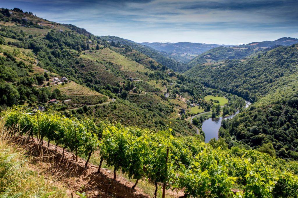 Coteaux du Fel, vallée du Lot, Aveyron