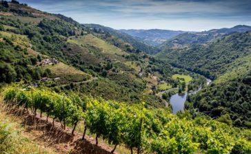 Coteaux du Fel, vue sur la vallée