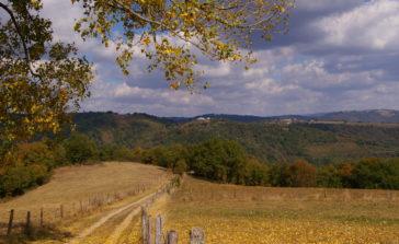 Sentier menant sur le paysage vallée du lot